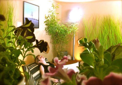 Company - Gembu   Interior Design